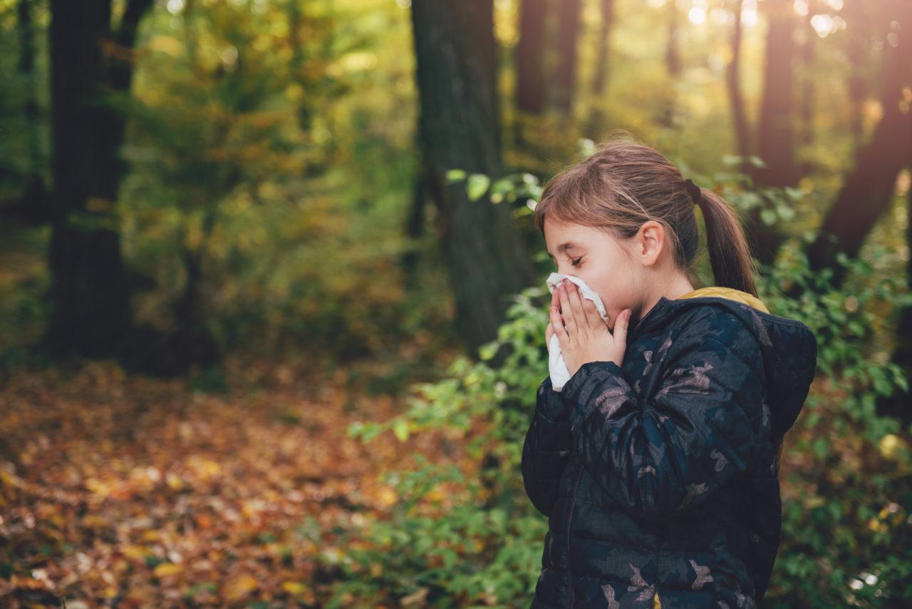 鼻敏感還是感冒?_林永和醫生_黃巴士
