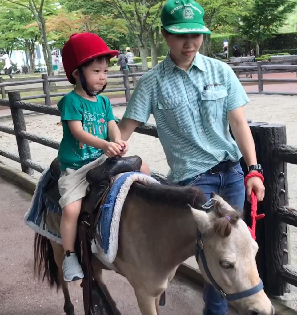 【福崗親子遊】餵飼野生動物體驗 九州必到的自然動物園_黃巴士