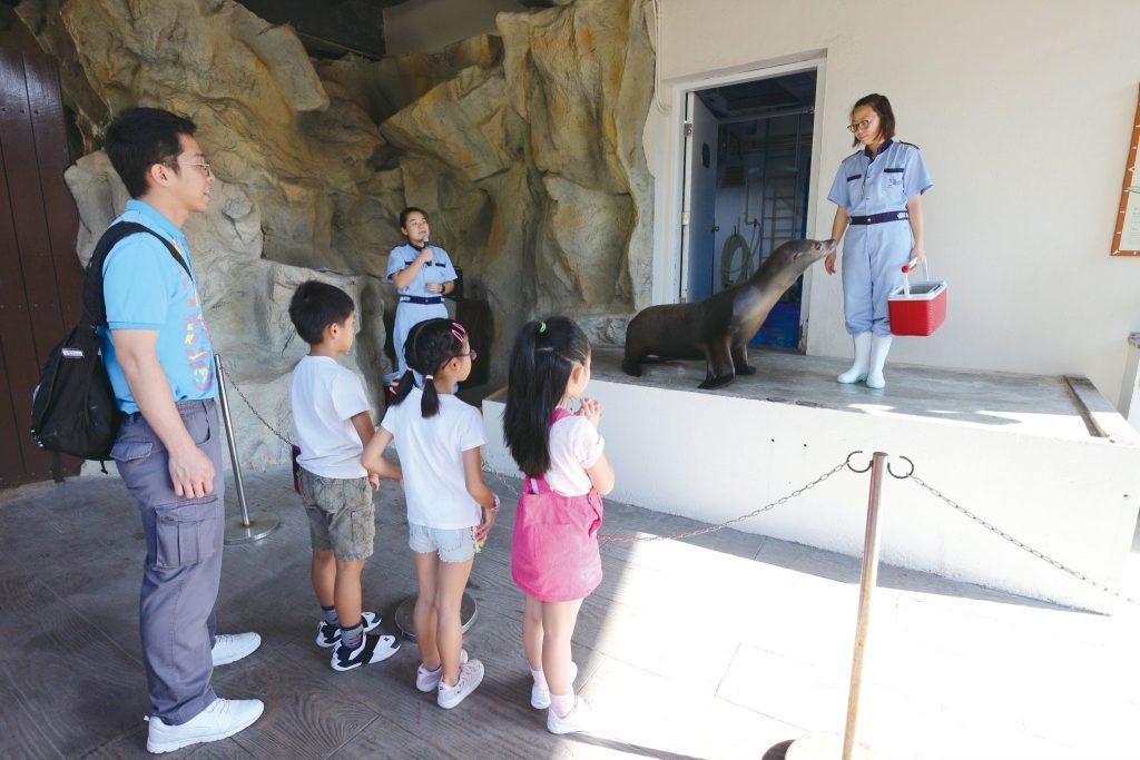 海洋公園學院_探索歷險課程_黃巴士